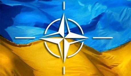 Небо Украины в 2012 году подарят ПВО НАТО в т.ч. германским Люфтваффе