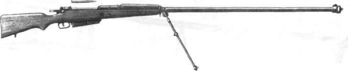 विदेशी विरोधी बंदूकें