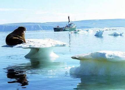 У России собираются отобрать право на Арктику