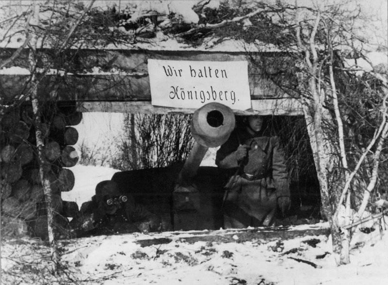 ドイツ精神の砦の崩壊