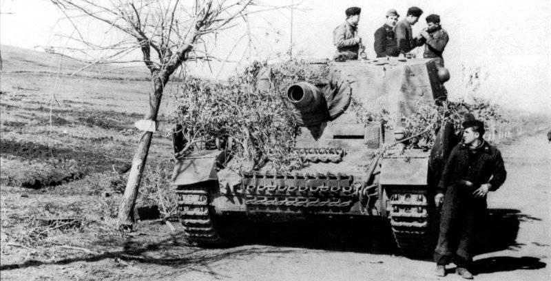 ブルマー4世突撃砲(Sd.Kfz.166)