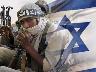 エジプトはイスラエルに対してベドウィン軍を準備します:イスラエル今日