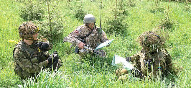 에스토니아와 라트비아 인 무적의 군대가 자랑스럽게