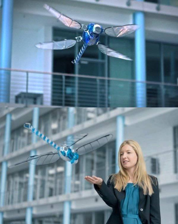 Robot yusufçukların uçuşunda ustalaştı