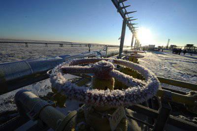 Нефть упала, или В инновационной экономике России старые проблемы
