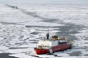 Арктическая безопасность