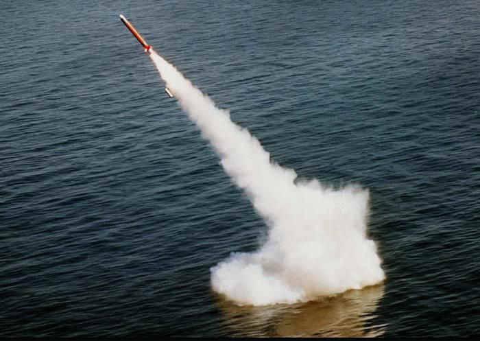 US Navy geflügelte Demokratie