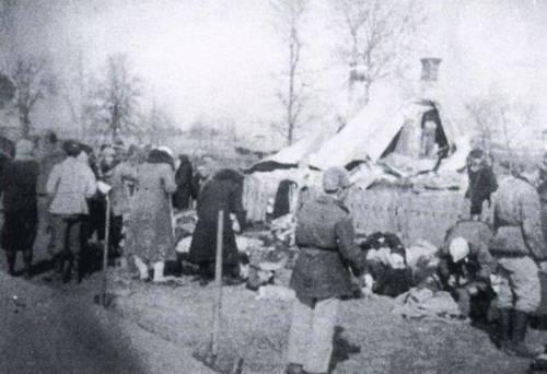 Volyn 대학살 - OUN의 범죄