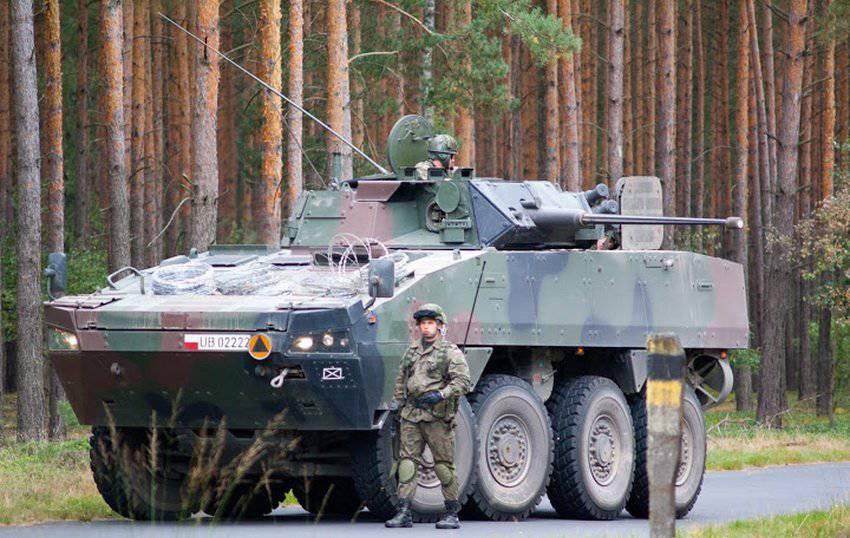 Image result for польско войско росомаха