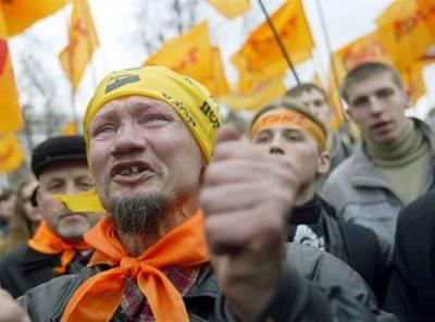 Оранжевая революция. Инструкция по аннигиляции