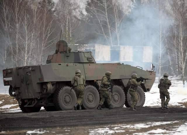 """""""豹子"""",""""螃蟹""""和""""癌症""""将增加波兰地面部队的力量"""