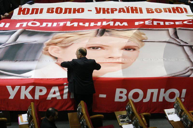 자유 Tymoshenko 우크라이나의 유럽 전망에 대한 대가로