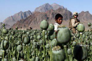 EUA - Afeganistão: o problema das drogas