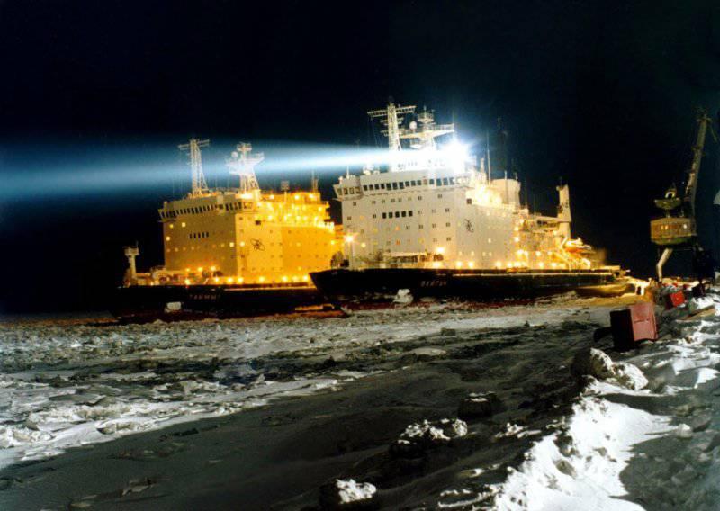 Под знаком Полярной звезды. Боевые корабли в Арктике