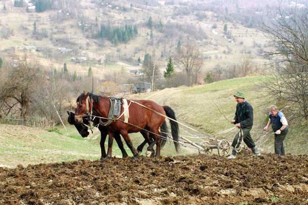 ロシアの村と食料安全保障