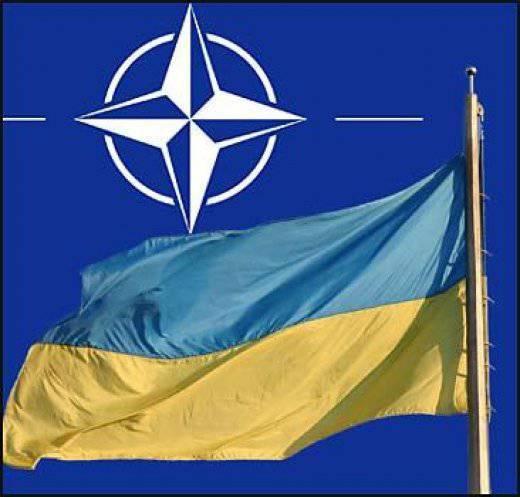Documentos que confirmam o desejo das autoridades ucranianas de entregar o país da OTAN