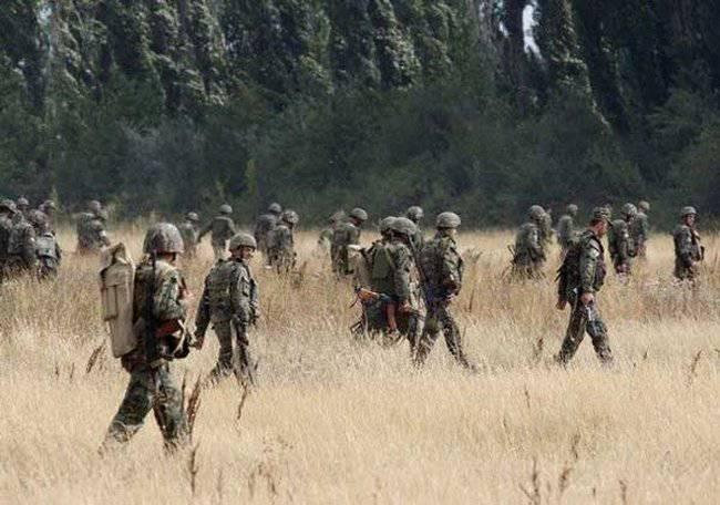 ウクライナの傭兵「数百」、またはSaakashviliが再び継承