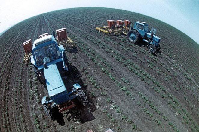 농업 부문의 손실