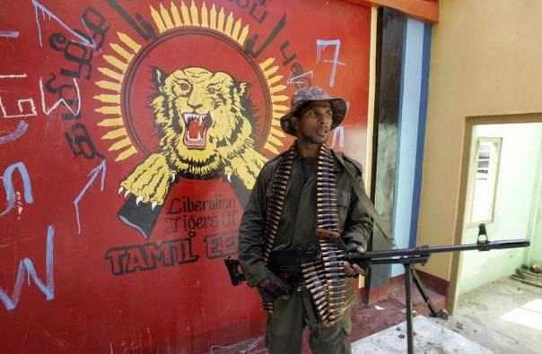 Tigres tamouls