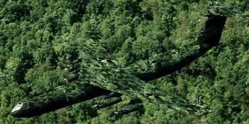 """照片。 在军用飞机的例子中使用""""Photo-Stealth""""(来自网站www.automopedia.org)"""
