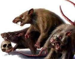 Course de rat américain. Qui nourrit la révolution, il la danse