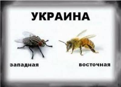 1402719422_ukraine4_f67ddcbffe9866032c94
