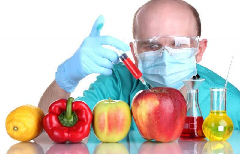 Введение в России госрегистрации ГМО отложили на три года