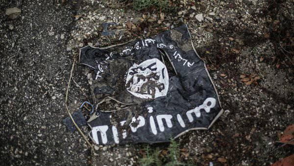 Сирийские повстанцы не выдерживают натиск ИГИЛ