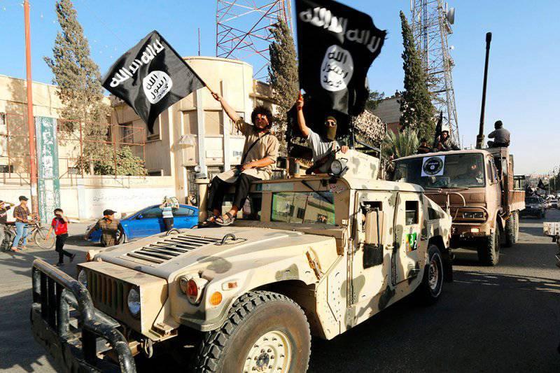 Перспектива шиито-суннитской войны и её последствия