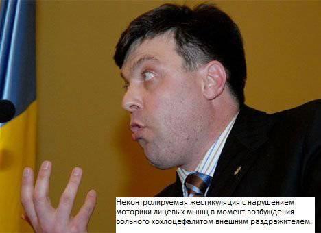 http://topwar.ru/uploads/posts/2014-09/1410939539_kokl3.jpg
