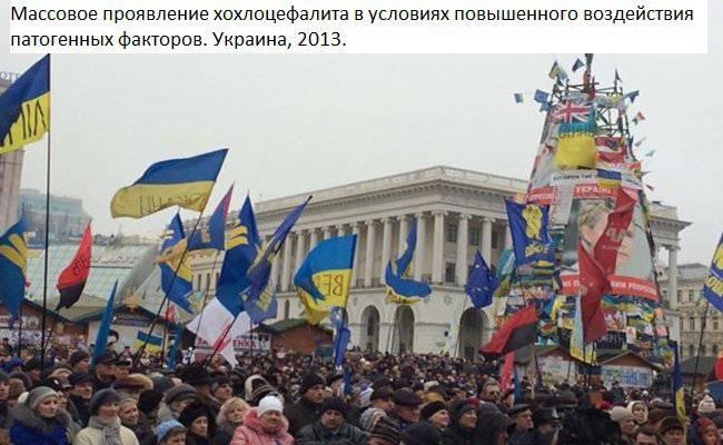 http://topwar.ru/uploads/posts/2014-09/1410939559_kokl6.jpg