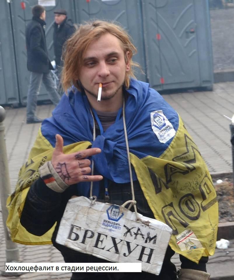 http://topwar.ru/uploads/posts/2014-09/1410939585_kokl5.jpg