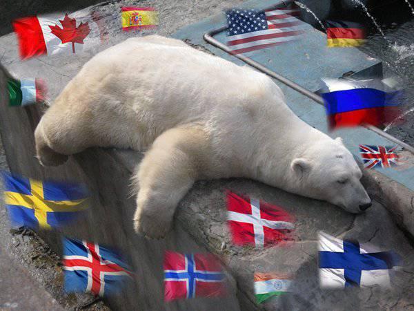 От Великобритании до Сингапура: как мир делит шкуру «арктического» медведя