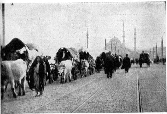 Как турецкие национал-либералы привели Османскую империю к краху