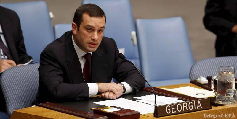 जॉर्जियाई रक्षा मंत्री इराकली अलसानिया ने खारिज कर दिया