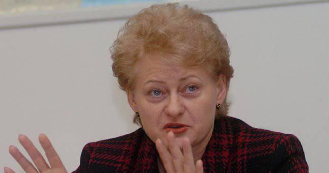 """Grybauskaite declaró que Ucrania debe ser ayudada militarmente y dijo cómo reflejaría la """"agresión rusa""""."""
