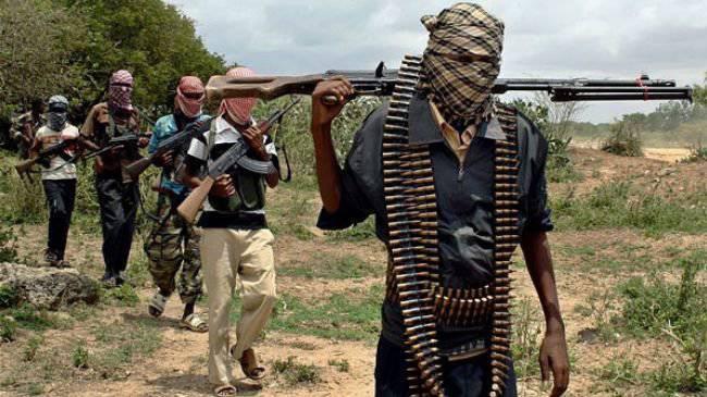 ナイジェリアは「Boko Haram」に立ち向かうためにロシアの武器を買う準備をしている