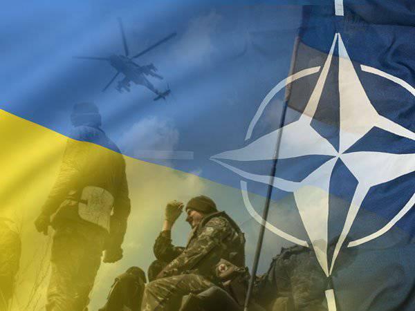 दिमित्री सेमुशिन। यूक्रेन में संघर्ष का नौवां महीना: नाटो की रणनीति