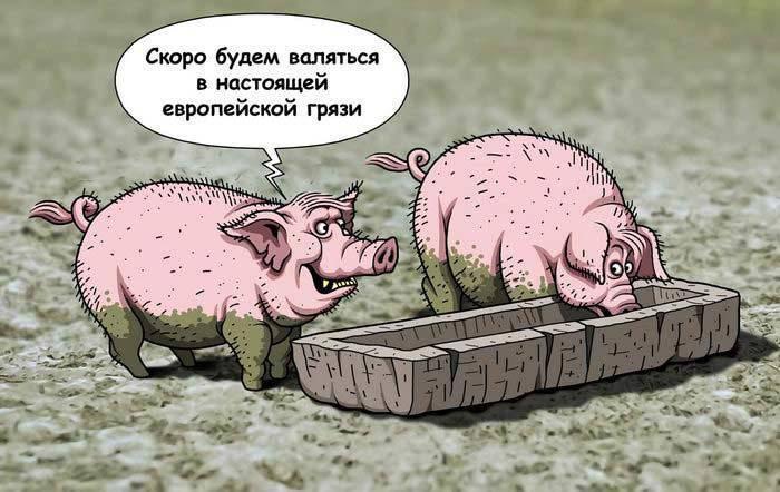 http://topwar.ru/uploads/posts/2014-12/1419481568_1419367283_1403808524_f4-karikatura_115.jpg