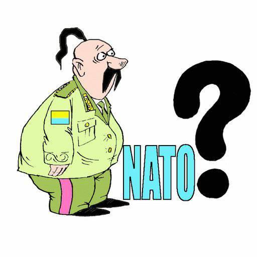 ウクライナでは、NATO加盟に関する国民投票の署名の収集が開始されました