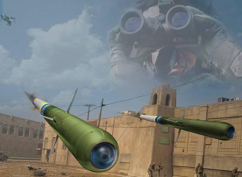 Управляемая ракета Raytheon/EAI Talon LGR (США/ОАЭ)
