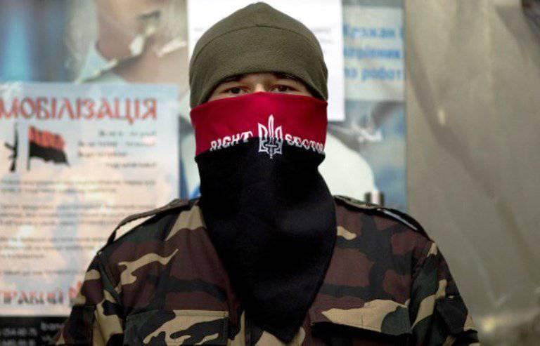 """""""राइट सेक्टर"""" ने सुरक्षा अधिकारियों से खुले शत्रुता को त्यागने और डोनबास और क्रीमिया में तोड़फोड़ युद्ध को आगे बढ़ाने का आग्रह किया"""