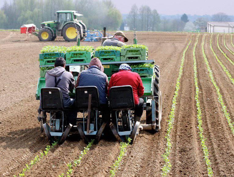 Аграрние земля 1г аренда в германия