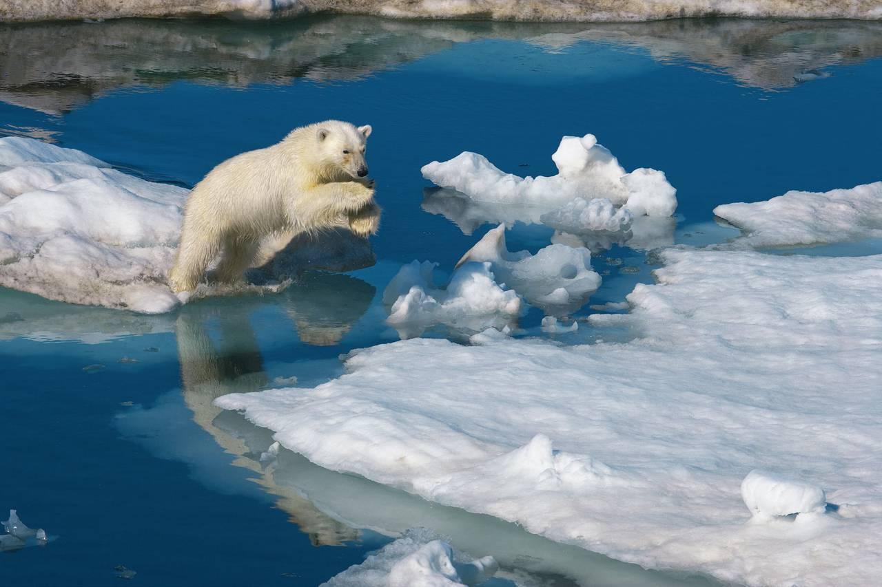 Картинки по запросу арктическая башня холодного воздуха