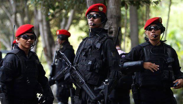 """Fuerzas especiales indonesias: """"boinas rojas"""", """"anfibios"""" y otros"""