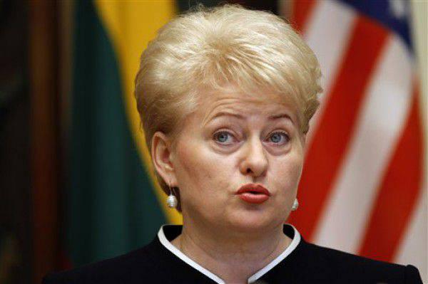 लिथुआनियाई पोर्टल पर, दलिया ग्राइबॉस्केट को पूर्व-केजीबी अधिकारियों द्वारा ब्लैकलिस्ट किया गया था