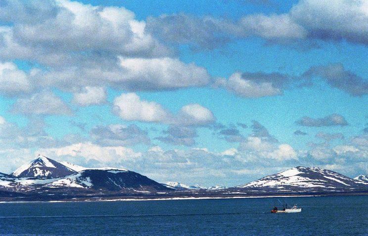 Yerli Hawaii ve Alaska halkı, BM'yi meşru olarak kendi kaderlerini tayin haklarını sağlamalarını istedi.