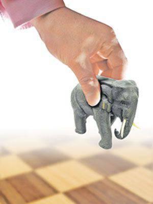 bir fil tabii