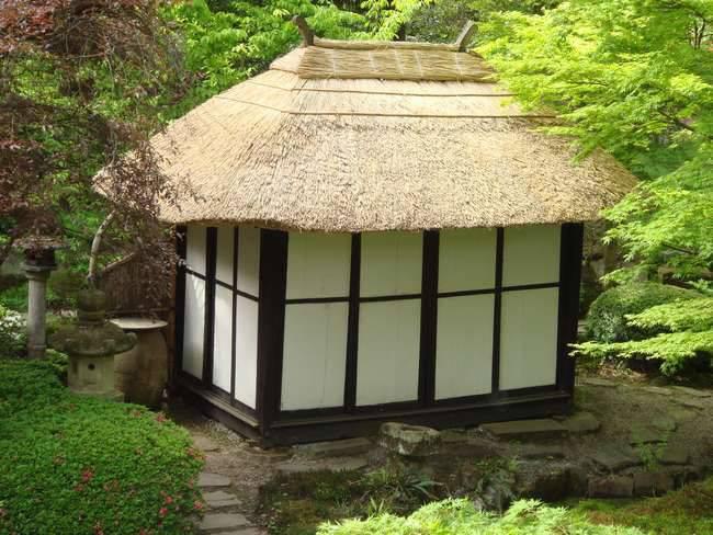 Samuray ve çay