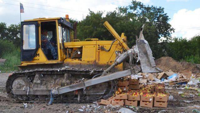 Anatoly Wasserman sulla distruzione di beni sanzionati